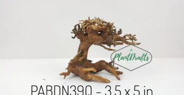 SPECIAL DISCOUNT Nano Aquarium Driftwood Bonsai Tree