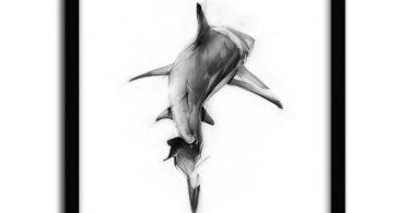 Shark II Print by Alexis Marcou