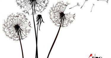 Dandelions Digital Laser Cut Files SVG DXF Printable Download