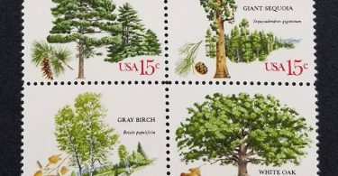 Eight 8 vintage unused postage stamps  Trees // 15 cent
