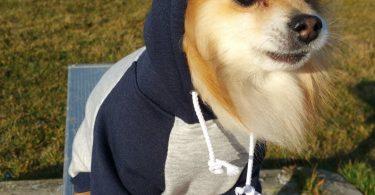 Gray Navy Fleece dog hoodie HANDMADE dog clothes XS4XL pet
