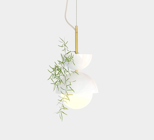 Hemisphere Pendant Planter/Lamp