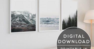 Nature Printable Set Of 3 Prints 3 Piece Wall Art Set Of