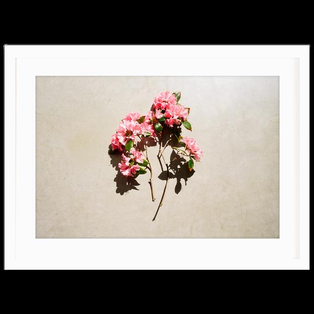The Fleur Print