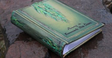 Leather photo album 10 x 7 1/2  with embossed green leaves for