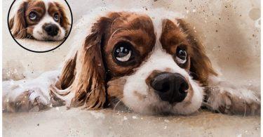 Pet Portrait Custom Pet Portrait Pet Portrait Custom Pet