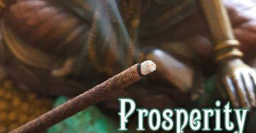 Prosperity Incense  Abundance Incense Sticks  Vetiver