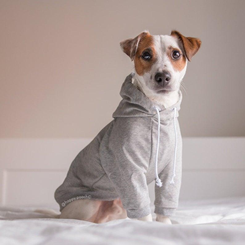 Raglan Dog Hoodie Dog Clothes Warm Dog Sweater Custom Dog