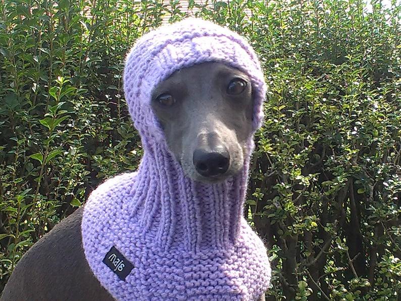 Italian Greyhound Snood/ Greyhound Hat / Hand Knit Dog Hat /
