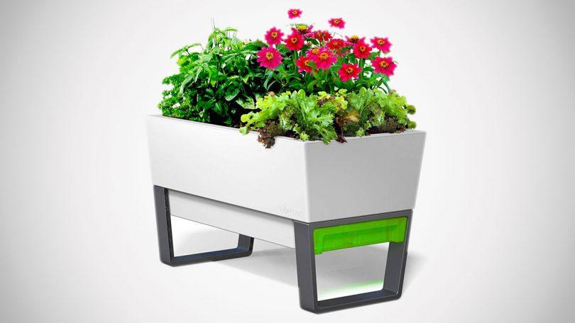 Glowpear Urban Garden Self-Watering Planters