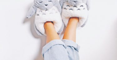 My Neighbour Slippers