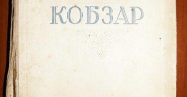 Rare book Classic literature Ukrainian book Ukrainian