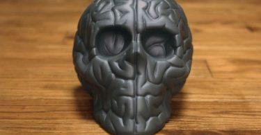 Skull Brain Black by Emilio Garcia